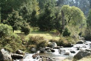 Creek_(Los_Dinamos)