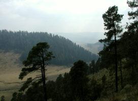 Sierra_Madre